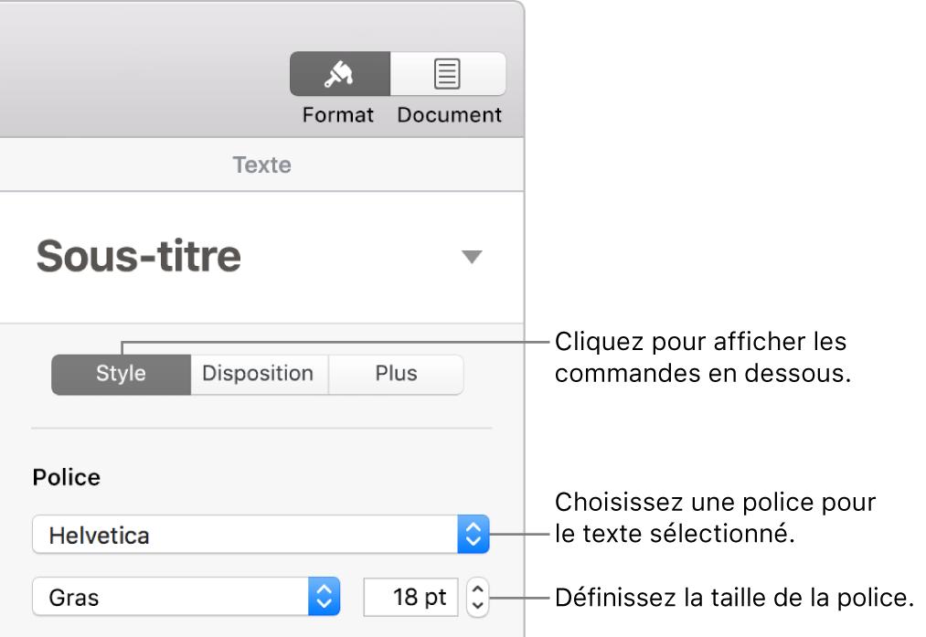 Commandes de texte de la section Style de la barre latérale Format, permettant de configurer la police et la taille des caractères.