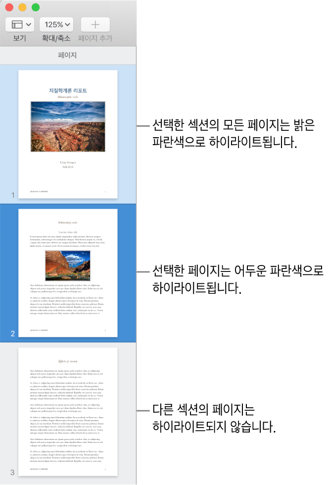 어두운 파란색으로 하이라이트된 선택한 페이지와 선택한 섹션의 모든 페이지가 밝은 파란색으로 하이라이트된 축소판 보기 사이드바.