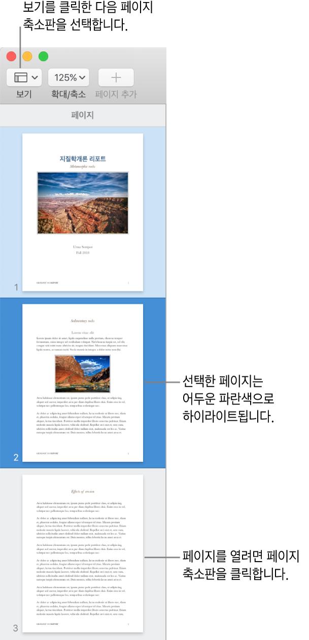 페이지 축소판 보기가 열려 있고 선택된 페이지가 어두운 파란색으로 하이라이트된 Pages 윈도우 왼쪽 측면의 사이드바.