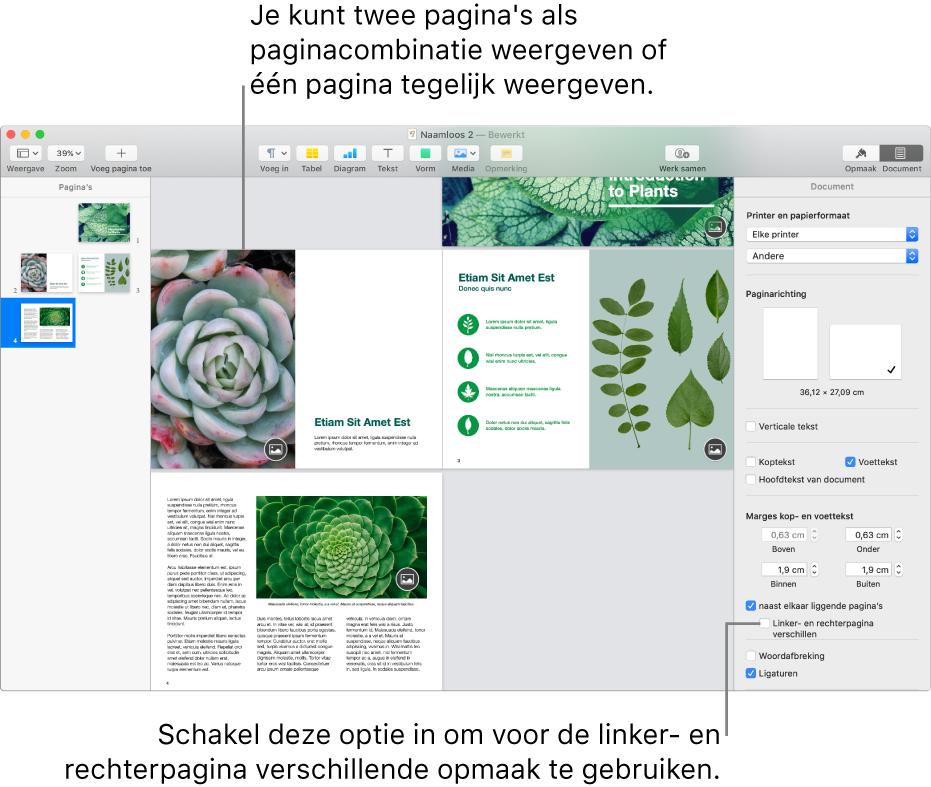 Het Pages-venster met paginaminiaturen en documentpagina's weergegeven als paginacombinatie. In de navigatiekolom 'Document' aan de rechterkant is het aankruisvak 'Linker- en rechterpagina verschillen' uitgeschakeld.