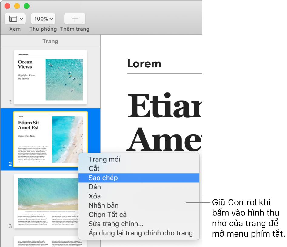 Chế độ xem Hình thu nhỏ của trang với một hình thu nhỏ được chọn và menu phím tắt mở.