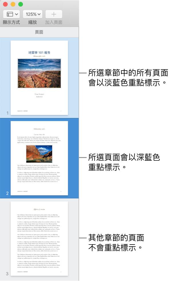 「縮圖顯示方式」側邊欄,所選取的頁面以深藍色重點標示,所選擇章節中的全部頁面則以淺藍色重點標示。
