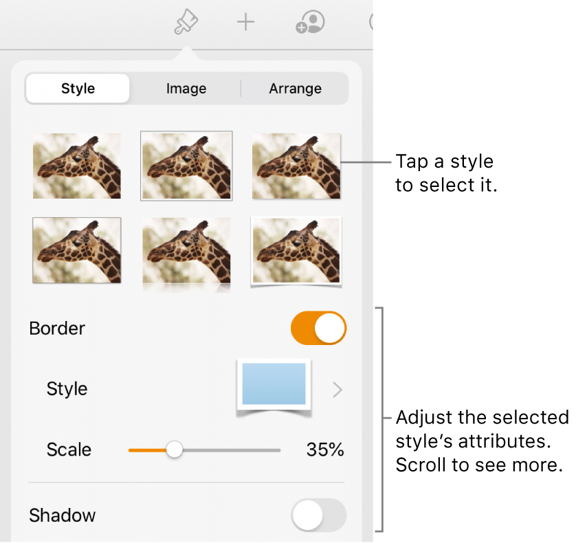 The Style tab with image styles at the top and the Style Options button at the bottom.