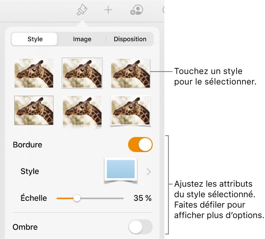 L'onglet Style avec les styles d'image en haut et le bouton Options de style en bas.