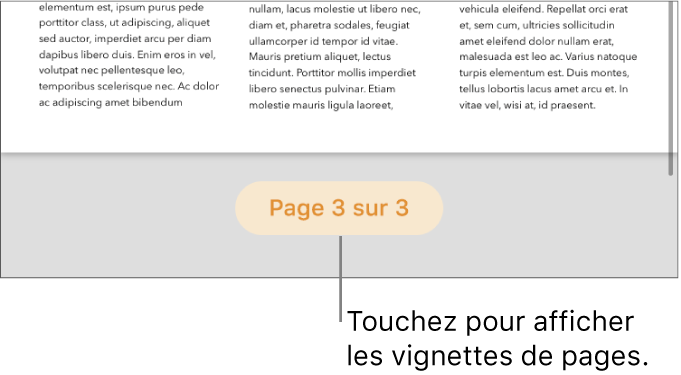 Un document ouvert avec le bouton du numéro de page en bas au centre de l'écran.