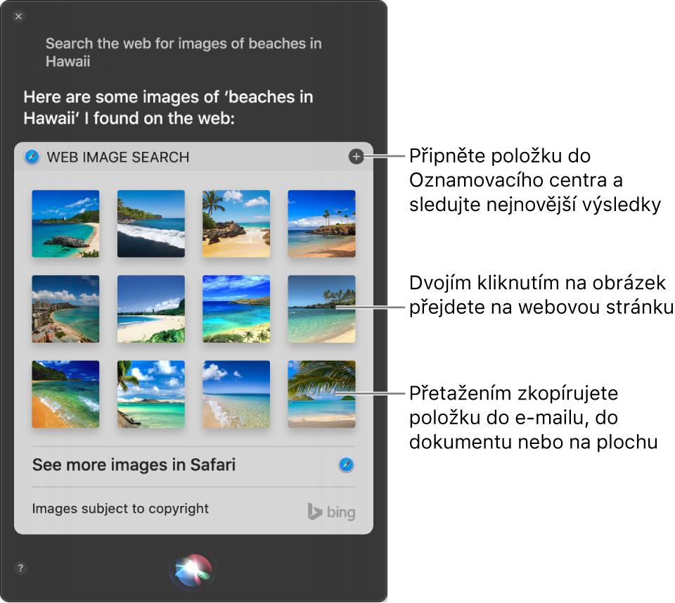 """Okno Siri svýsledky vyhledanými Siri po zadání požadavku """"Search the web for images of beaches in Hawaii."""". Výsledky můžete přišpendlit vOznamovacím centru, dvojím kliknutím na obrázek můžete otevřít webovou stránku, která tento obrázek obsahuje, nebo můžete obrázek také přetáhnout do e‑mailu, dokumentu nebo na plochu."""