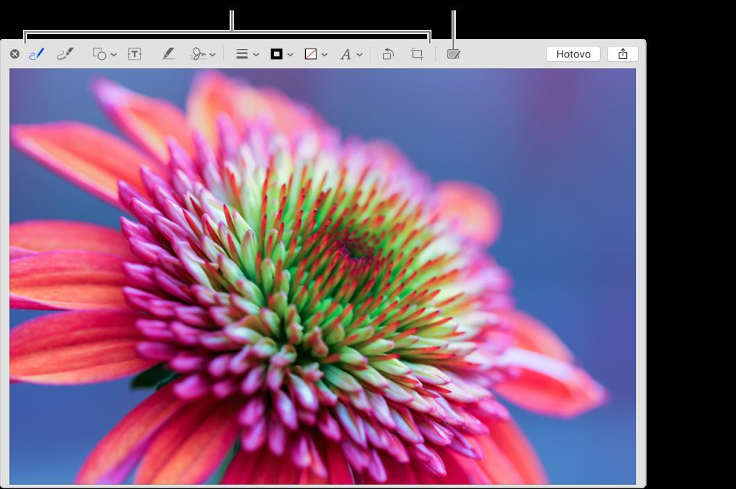 Obrázek vokně Anotace spanelem nástrojů snástroji pro anotace anástrojem, na který lze kliknout, chcete-li použít Anotace přes Kontinuitu na iPhonu nebo iPadu vblízkosti.