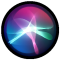 the Siri icon