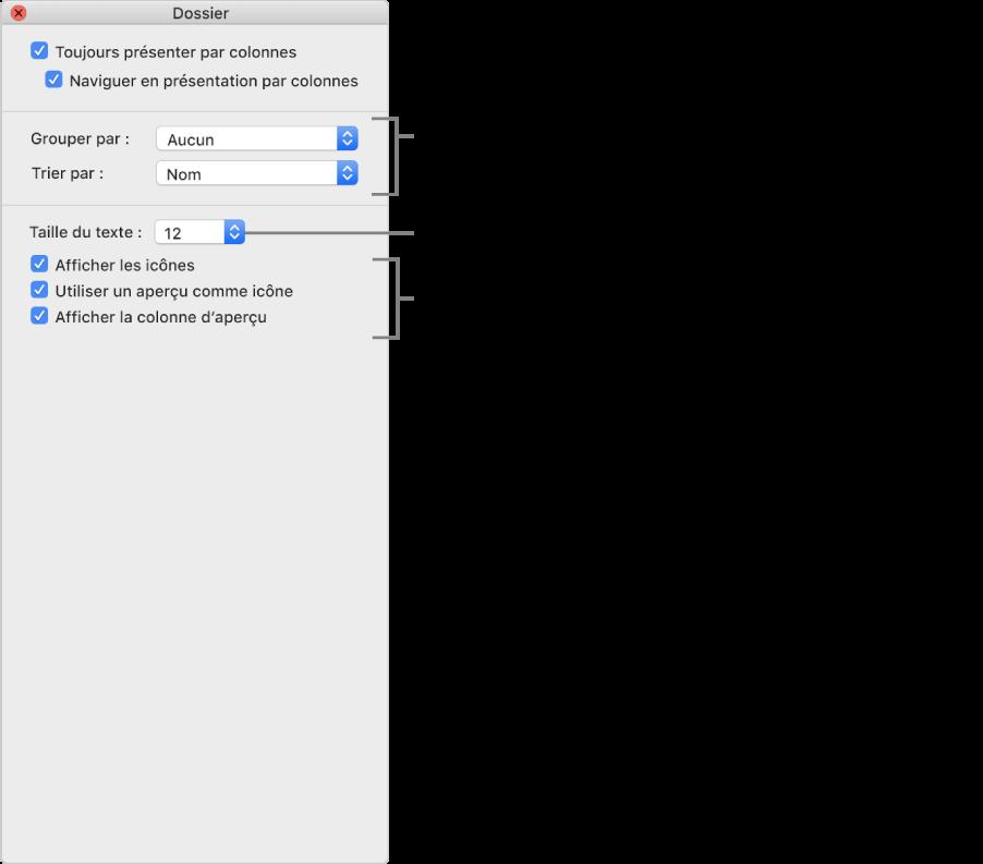 Options de la présentation par colonnes: Vous pouvez choisir le mode d'organisation et de tri des groupes, choisir une taille de police pour les étiquettes d'éléments, afficher des icônes avec des éléments, afficher des informations d'aperçu dans les icônes et afficher un aperçu des éléments sélectionnés dans une colonne distincte.