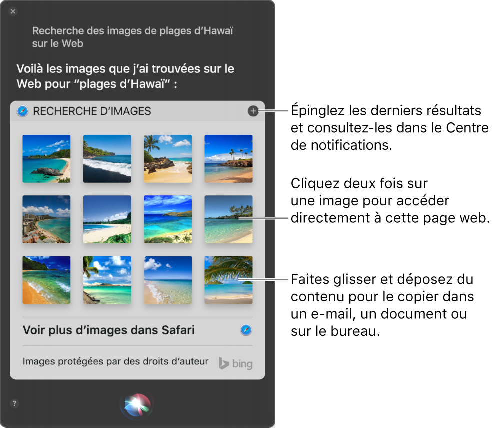 """La fenêtre Siri affichant les résultats de Siri pour la demande """"Recherche des images des Seychelles sur le Web"""". Vous pouvez épingler les résultats au Centre de notifications, cliquer deux fois sur une image pour ouvrir la page web qui contient l'image ou faire glisser une image dans un e-mail ou un document ou sur le bureau."""