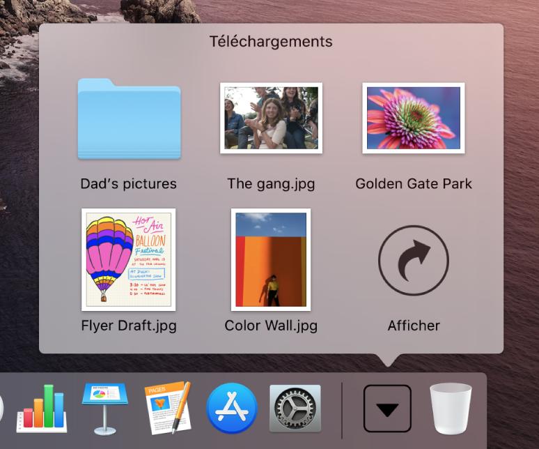 La pile Téléchargements dans le Dock ouverte pour afficher son contenu dans une grille.