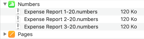 L'app Numbers dans la fenêtre Fichiers avec le bouton d'affichage sélectionné pour afficher trois fichiers synchronisés à un appareil.