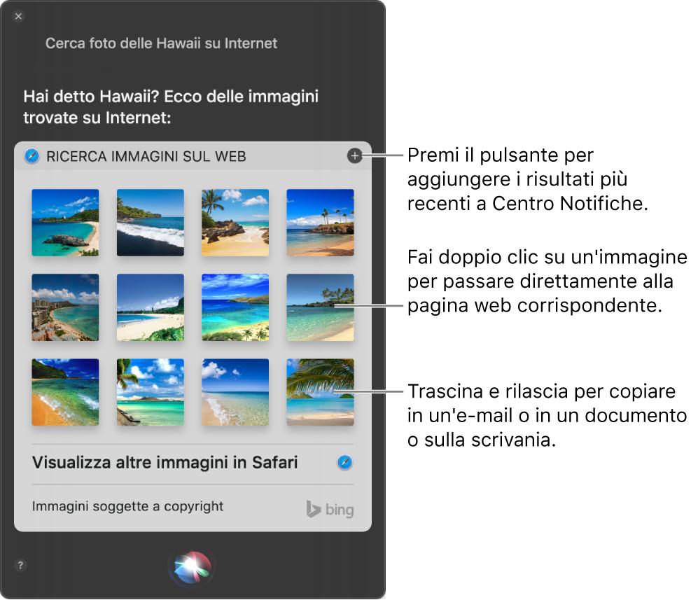 """La finestra di Siri che mostra i risultati di Siri per la richiesta """"Cerca nel web immagini di spiagge alle Hawaii"""". Puoi ancorare i risultati al Centro Notifiche, fare doppio clic su un'immagine per aprire la pagina web in cui è contenuta o trascinare un'immagine su un'e-mail, su un documento o sulla scrivania."""