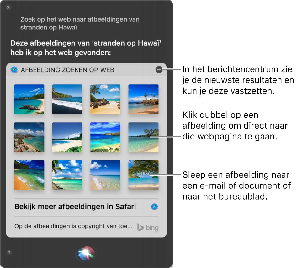 """Het Siri-venster met Siri-resultaten voor het verzoek """"Zoek op het web naar afbeeldingen van stranden in Hawaï"""". Je kunt de resultaten vastmaken aan het berichtencentrum, dubbel klikken op een afbeelding om de webpagina met de afbeelding te openen of een afbeelding naar een e-mail of document of naar het bureaublad slepen."""