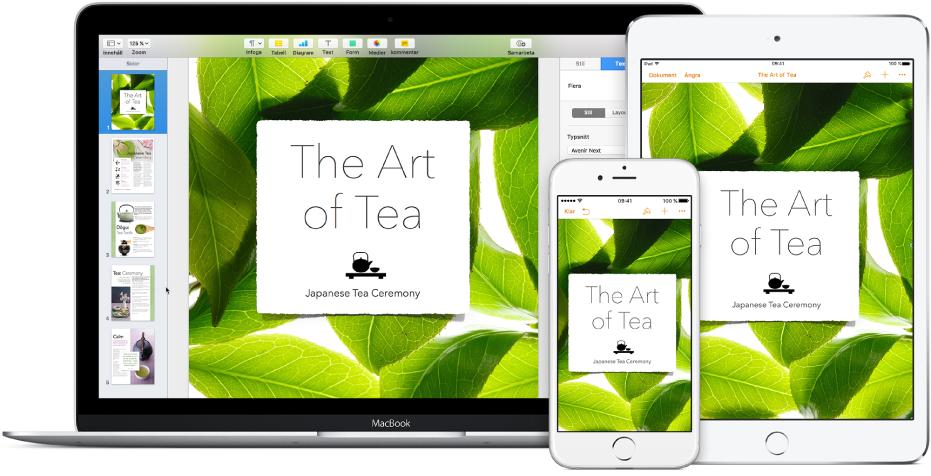 Samma filer och mappar visas i iCloudDrive i ett Finder-fönster på en Mac och i appen iCloudDrive på iPhone och iPad
