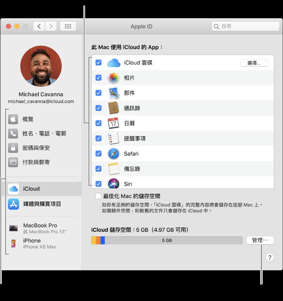 已選取所有功能的 iCloud 偏好設定。