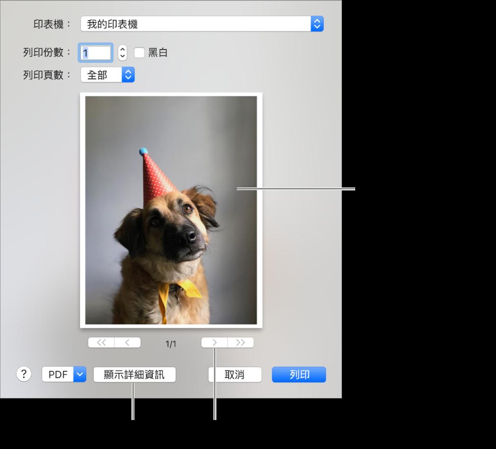 「印表機」彈出式選單中的圖像表示印表機的狀態。「列印」對話框會顯示您列印工作的小型預覽畫面。按一下「顯示詳細資訊」按鈕來查看所有列印選項。