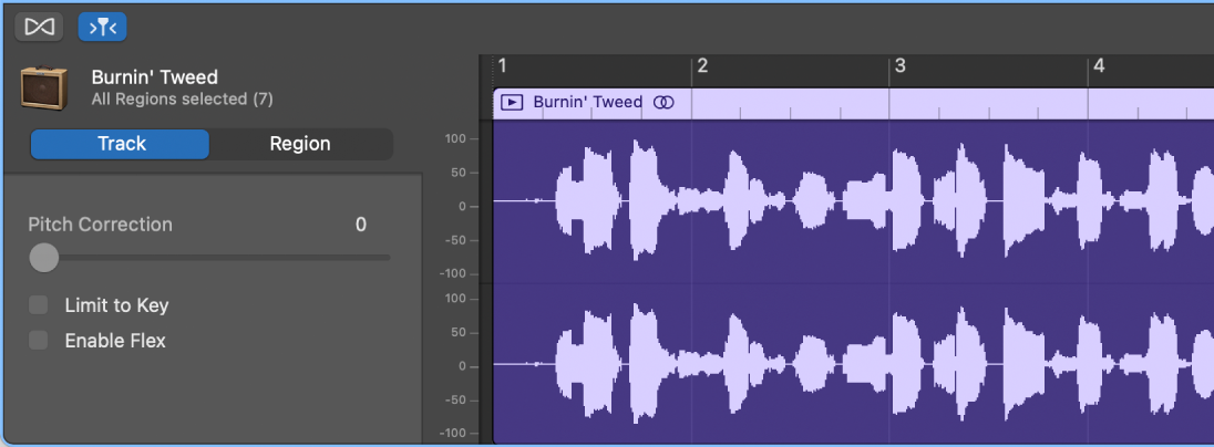 Audio Editor inspector showing Track controls.