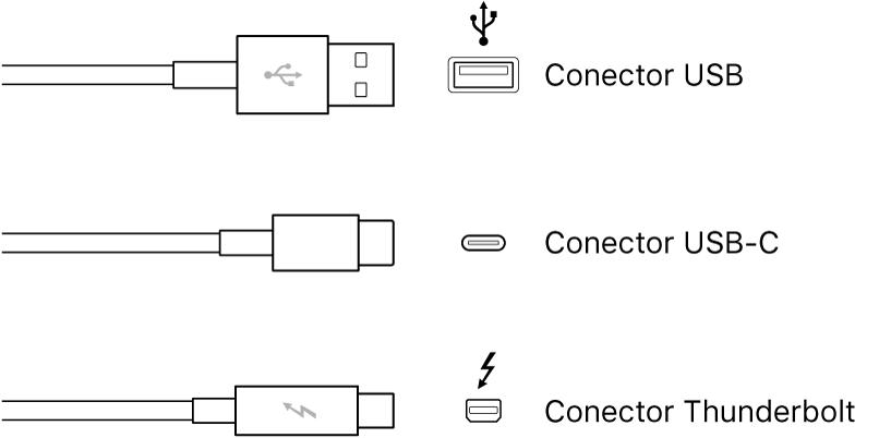 Ilustración de los tipos de conectores USB y FireWire.