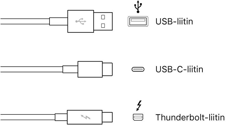 Kuva USB- ja FireWire-liitintyypeistä.