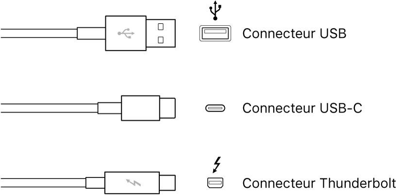 Illustration des types de connecteur USB et FireWire.