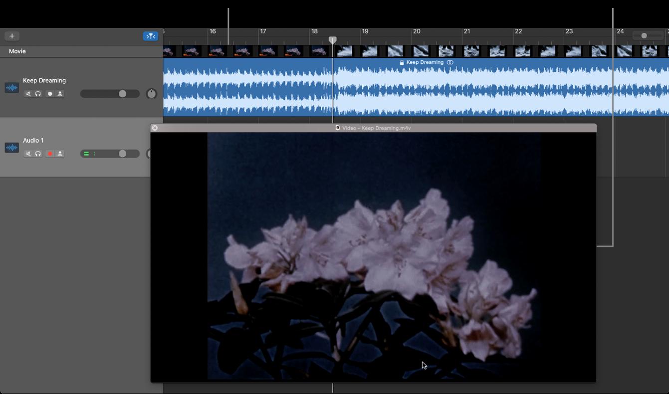 Fenêtre Film flottante et piste contenant la partie audio du film.