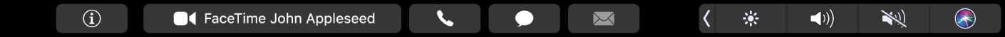 The FaceTime TouchBar displaying buttons for getting info about a contact, and for making a video or audio call, or sending a message or email.