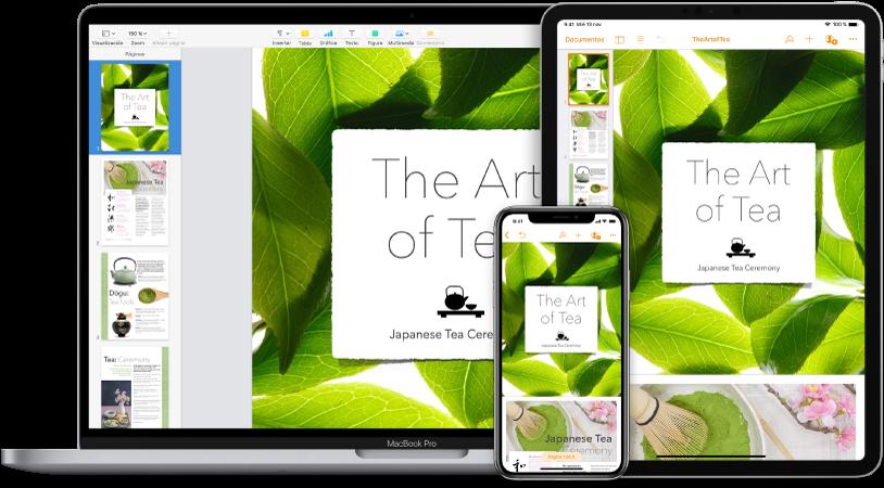 Contenido de iCloud al que se accede desde varios dispositivos.
