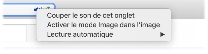 Le sous-menu de l'icône Audio avec les éléments «Couper le son de cet onglet», «Entrer dans Image dans l'image» et «Lecture automatique».