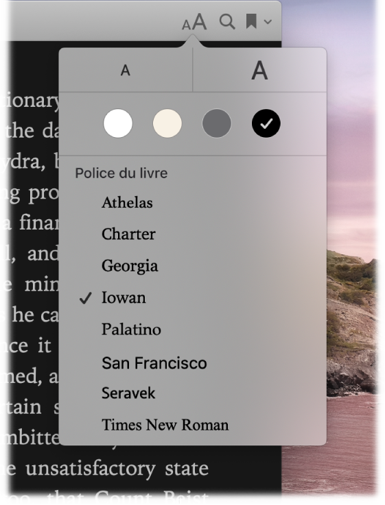 Une page de Livres affichant le menu Apparence.