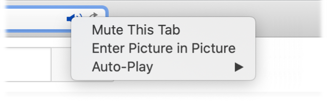 The submenu for the Audio icon, with Mute This Tab, Enter Picture in Picture, and Auto-Play items.