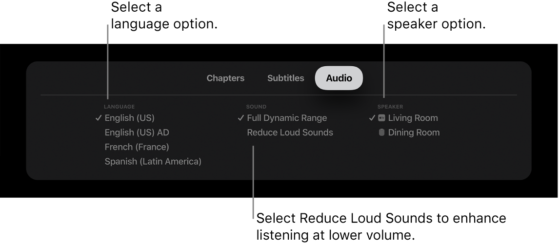 Audio menu during playback