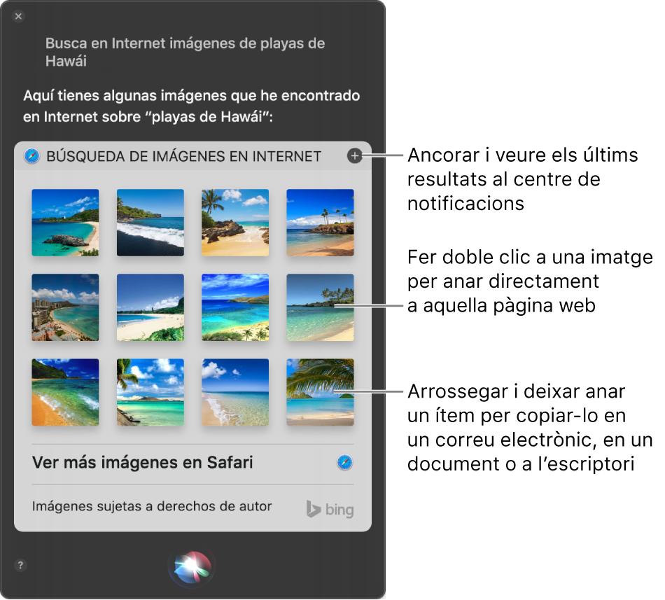 """La finestra de Siri amb els resultats de Siri a la petició """"Busca imágenes de playas de Hawái en Internet"""". Pots ancorar els resultats al centre de notificacions, fer doble clic en una imatge per obrir la pàgina web que la conté o arrossegar una imatge a un correu electrònic o document o a l'escriptori."""