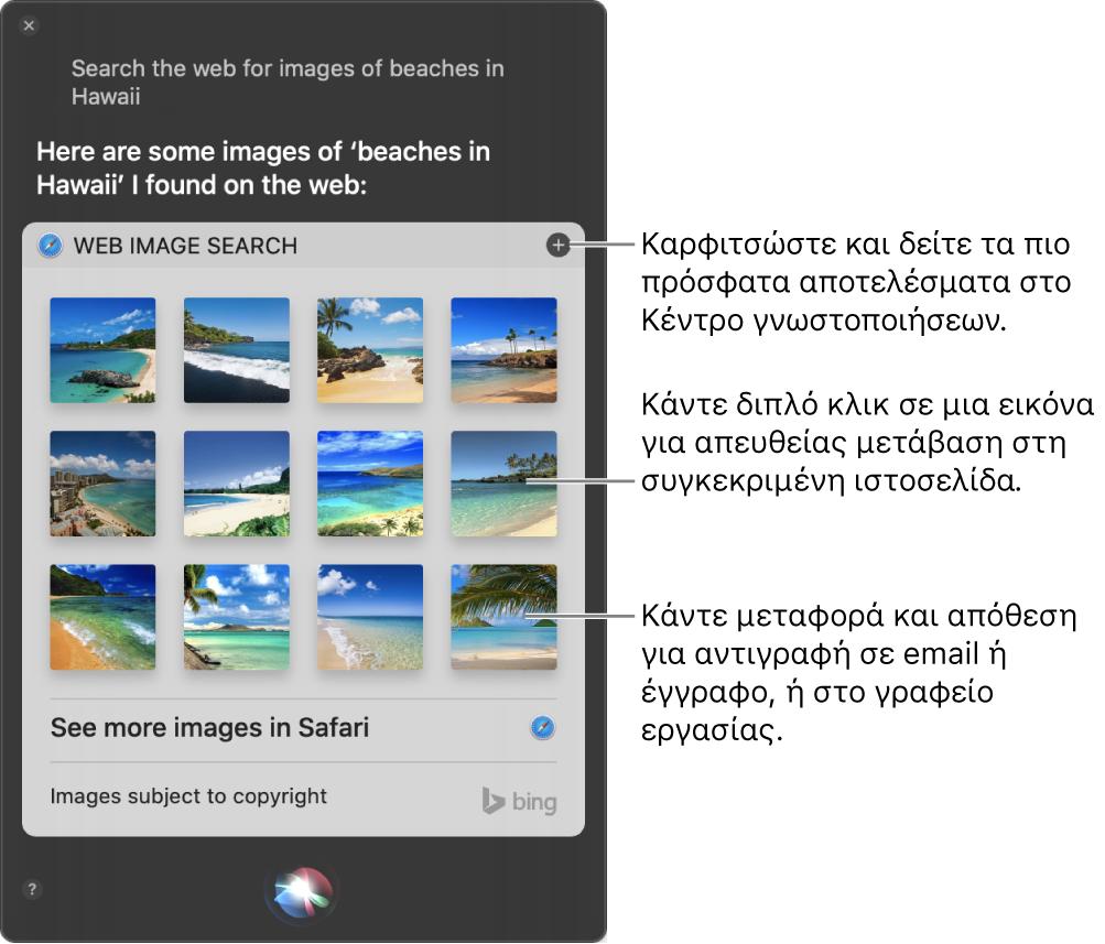 Το παράθυρο Siri με τα αποτελέσματα του Siri για το αίτημα «Search the web for images of beaches in Hawaii». Μπορείτε να καρφιτσώσετε τα αποτελέσματα στο Κέντρο γνωστοποιήσεων, να κάνετε διπλό κλικ σε μια εικόνα για να ανοίξετε την ιστοσελίδα που περιέχει την εικόνα ή να μεταφέρετε μια εικόνα σε ένα email ή έγγραφο ή στο γραφείο εργασίας.
