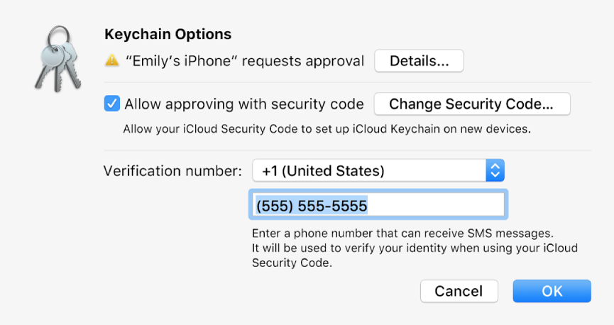 The iCloud Keychain Options dialogue with the name of the device requesting approval and a Details button next to it.