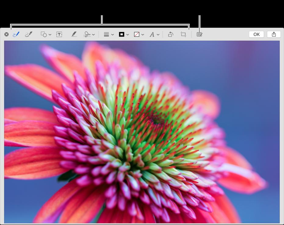 Una imagen en la ventana de Marcado mostrando la barra de herramientas de Marcado y el botón para usar Continuidad de Marcado en un iPhone o iPad cercano.