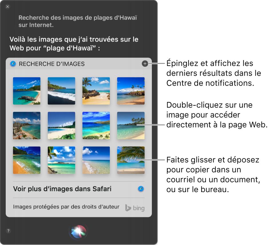 La fenêtre de Siri qui affiche les résultats de Siri à la demande: «Recherche des images de plages hawaïennes sur le Web.» Vous pouvez épingler les résultats dans le Centre de notifications, double‑cliquer sur une image pour ouvrir la page Web qui contient l'image ou faire glisser une image dans un courriel, un document ou sur le bureau.