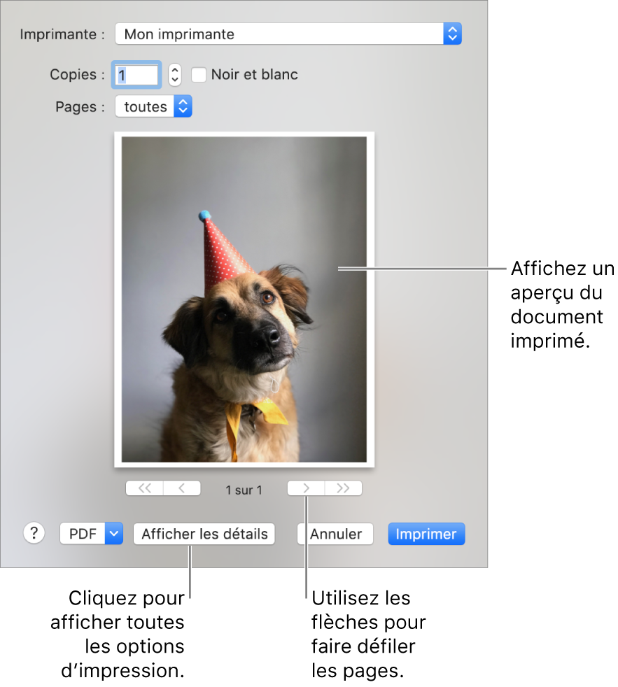 Les icônes du menu local Imprimante indiquent l'état de l'imprimante. La zone de dialogue Imprimer affiche un petit aperçu du document à imprimer. Cliquez sur le bouton Afficher les détails pour afficher toutes les options d'impression.