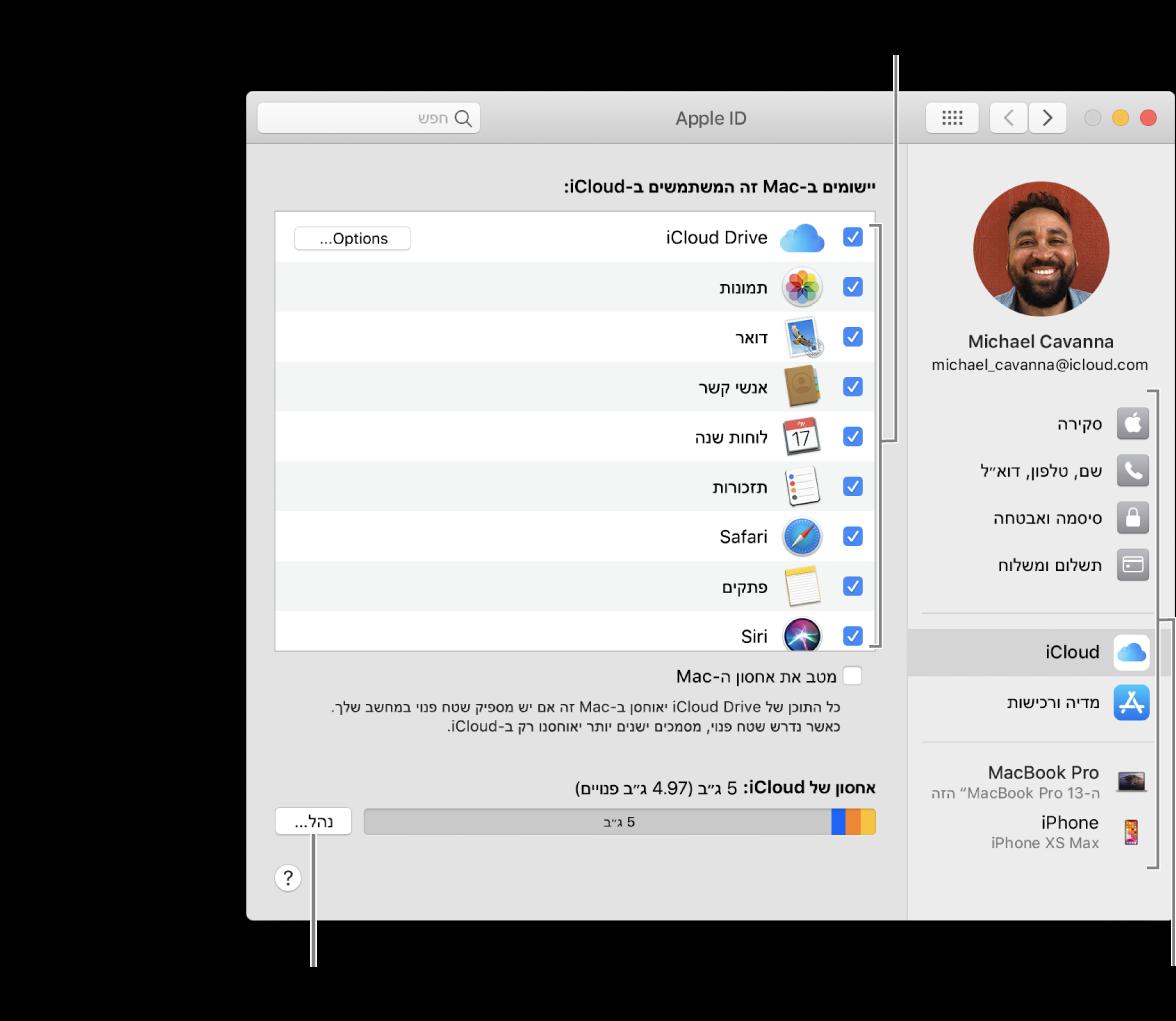 העדפות iCloud עם בחירה בכל המאפיינים.