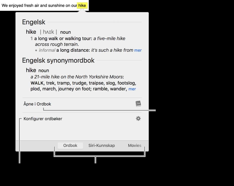Slå opp-vinduet som viser Ordbok- og Synonymordbok-definisjoner for et ord.