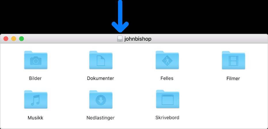 Det lille symbolet i tittellinjen i diskfilvinduet for en slettet brukers Hjem-mappe.