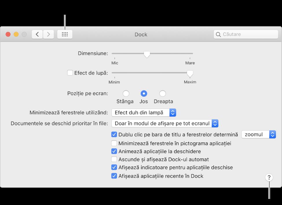 Faceți clic pe Afișează tot pentru a vedea toate pictogramele de preferințe. Faceți clic pe butonul Ajutor pentru a obține mai multe informații despre panou.