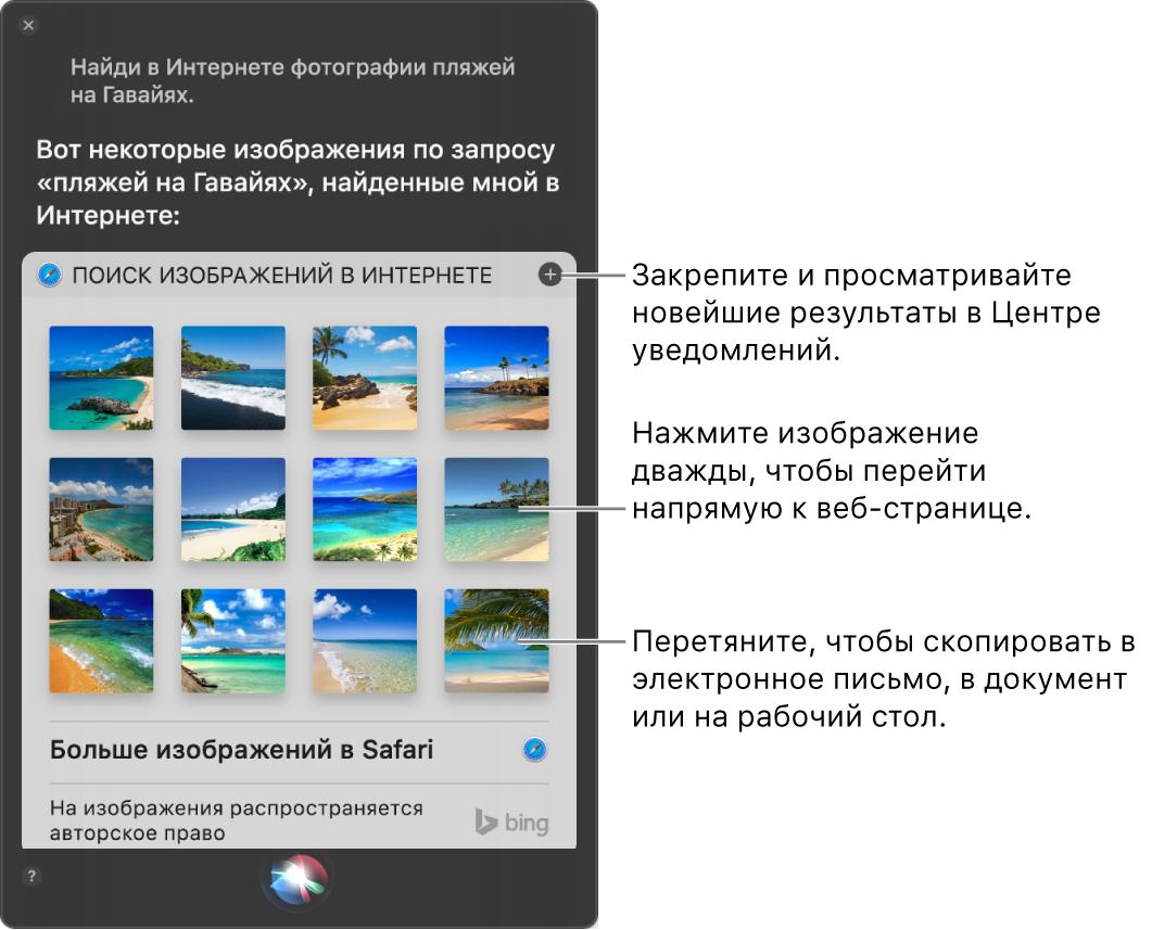 Окно Siri срезультатами запроса «Найди вИнтернете фотографии пляжей наГавайях». Можно закрепить результаты вЦентре уведомлений, дважды нажать изображение, чтобы открыть содержащую его веб-страницу, или перетянуть изображение вэлектронное письмо, вдокумент или нарабочий стол.