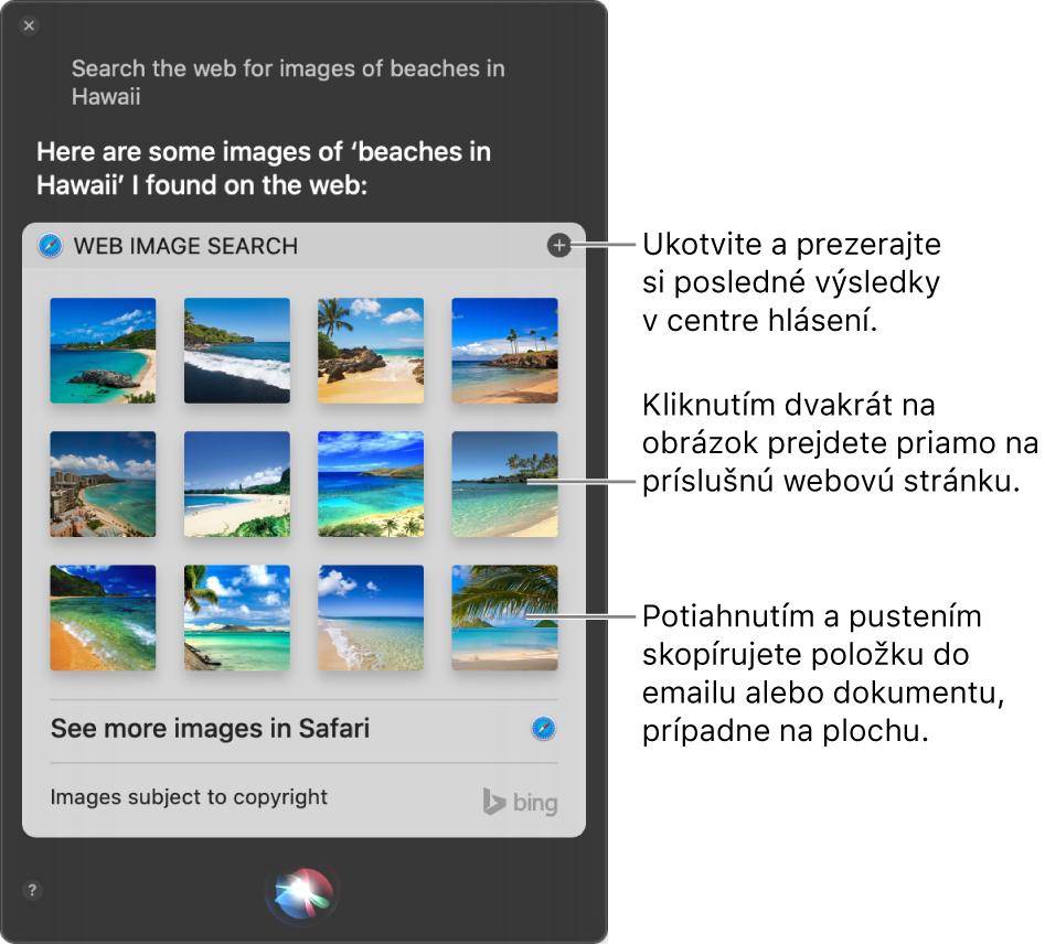 """Okno Siri zobrazujúce výsledky Siri na požiadavku """"Search the web for images of beaches in Hawaii"""" (Vyhľadať na webe obrázky pláží na Havaji). Výsledky môžete pripnúť do Centra hlásení, dvojitým kliknutím na obrázok otvoríte webovú stránku, ktorá daný obrázok obsahuje, alebo potiahnite obrázok do emailu, dokumentu či na plochu."""