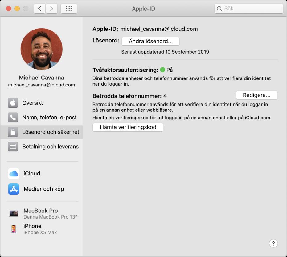 Inställningspanelen Apple-ID med ett sidofält med olika typer av kontoalternativ som du kan använda och inställningspanelen Lösenord och säkerhet för ett befintligt konto.