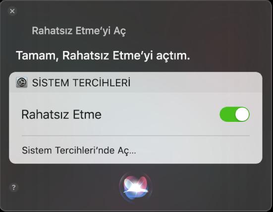 """Görevi tamamlama isteğini gösteren Siri penceresi, """"Rahatsız etme'yi aç."""""""
