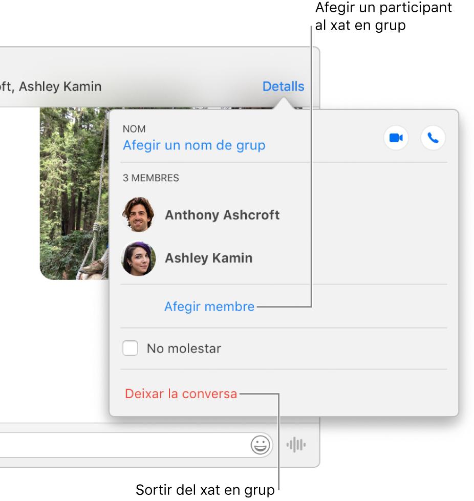 """Vista Detalls, que apareix en fer clic a Detalls en una conversa en grup. Es mostra """"Afegir membre"""" sota el nom de l'últim participant de la llista i apareix """"Deixar aquesta conversa"""" a la part inferior del quadre de diàleg."""