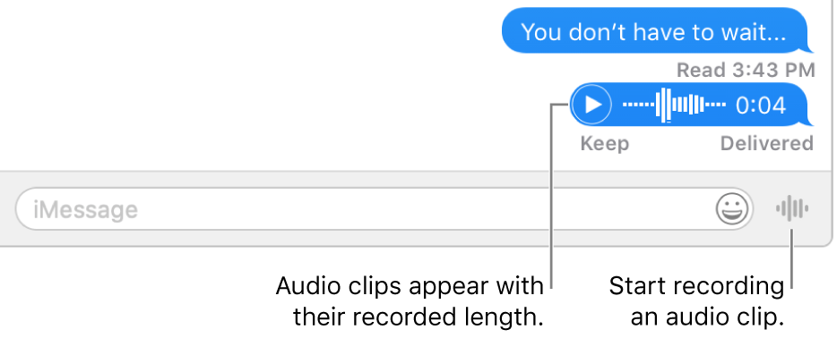 A conversation in the Messages window, showing the Send Voice Message button next to the text field at the bottom of the window.