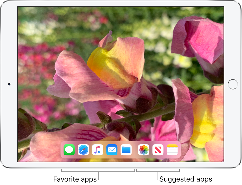 The Dock showing five favorite apps on the left and three suggested apps on the right.