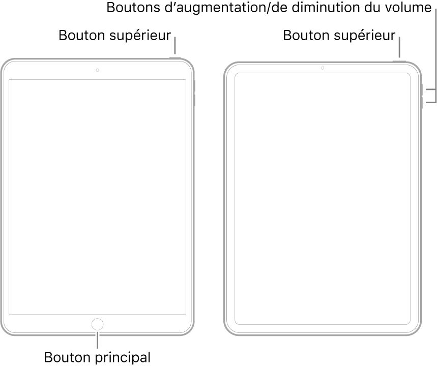 Illustrations de deux types de modèles d'iPad avec l'écran orienté vers le haut. L'illustration de gauche présente un modèle doté d'un bouton principal en bas de l'appareil et d'un bouton supérieur sur le bord supérieur droit de l'appareil. L'illustration de droite présente un modèle dépourvu de bouton principal. Sur ce dernier, les boutons d'augmentation et de diminution du volume sont présents sur le bord droit de l'appareil, près du haut, et un bouton supérieur est présent sur le bord supérieur droit de l'appareil.